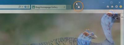 Download Bing Wallpapers Without Watermark » Winhelponline