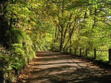 Marsh Bridge Road, Nr Dulverton