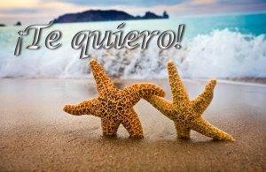 I love you in Spanish e-card