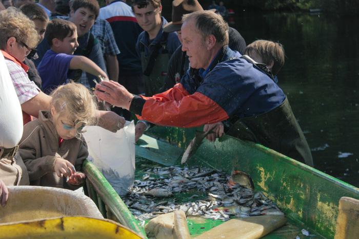 Mueritzfischer2
