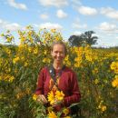 """Graduate student Amy Alstad stands in a bunch of sawtooth sunflowers, which she described as """"glorious."""" In 2012, she conducted the third survey of prairie remnants in Wisconsin. The series began 60 years ago. Photo: Courtesy Amy Alstad/UW-Madison"""