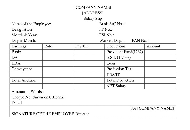 Pay Slip Format wisdomjobs