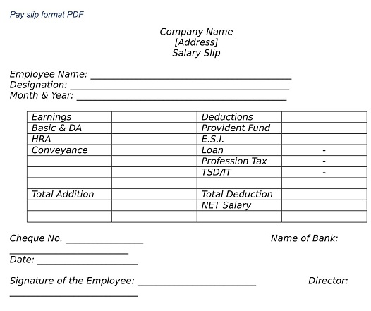WHAT IS EMPLOYEE SALARY SLIP FORMAT PD wisdomjobs