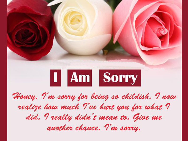 I am Sorry Messages For Wife - Sweet  Romantic - WishesMsg - apology card messages