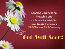 Small Of Get Well Wishes
