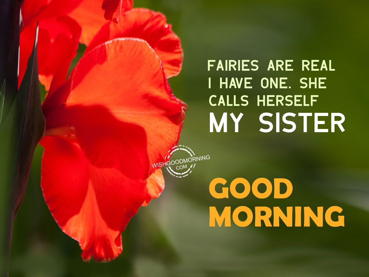 Long Distance Relationship Wallpapers With Quotes Good Morning Wishes For Sister Good Morning Pictures