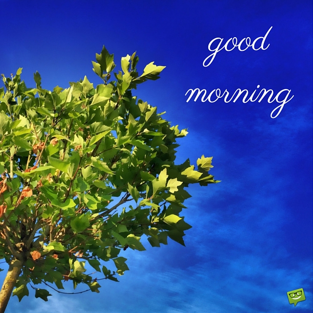 Husband And Wife Love Quotes Wallpapers Good Morning With Tree