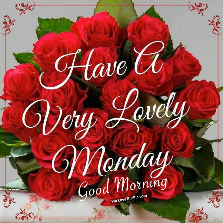Good Morning Friends Wallpaper With Quotes Good Morning Wishes On Monday Pictures Images