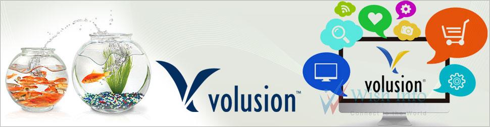 Volusion Website Design Custom Theme/Template Design Volusion