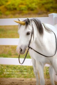 Antique Gold Unicorn Horn