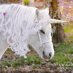 White Unicorn Horn for Horse