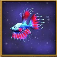 Pet:Betta Fish   Wizard101 Wiki
