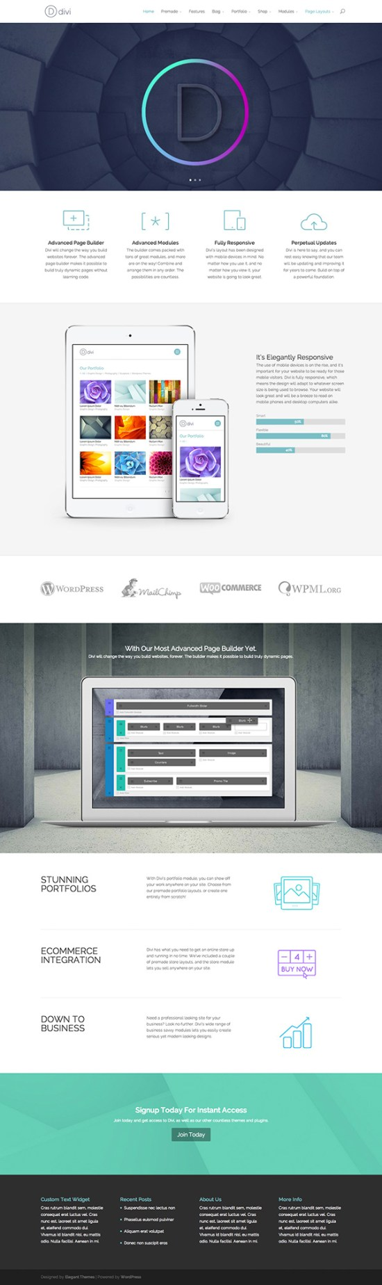 Divi Responsive WordPress Theme