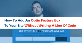 How to Add an Optin Feature Box to Your Site without Writing a Line of Code