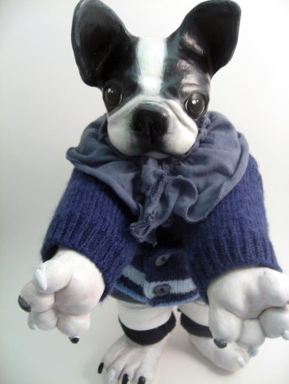 Boston Terrier Pup