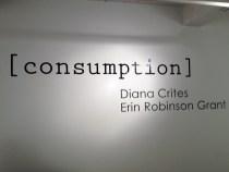 Consumption | Gallery 114 | June, 2012