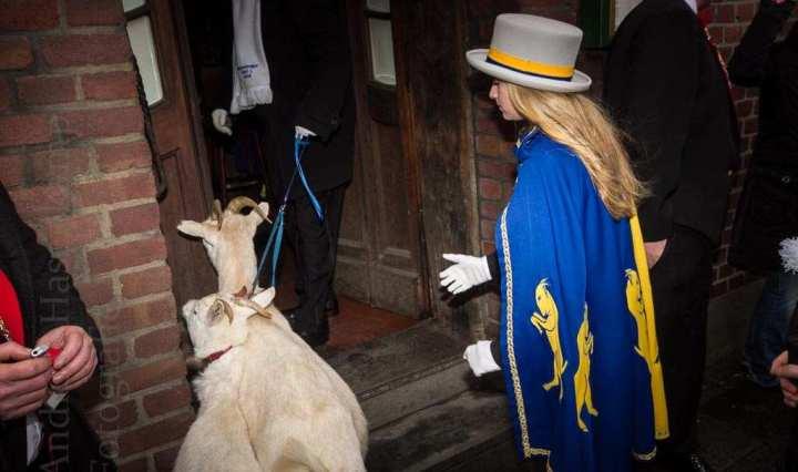 Rein mit des kleinen Mannes Kuh in die Gaststätte - kurz vor dem ZiBoMo-Umzug pflegt man die Tradition. Foto: A. Hasenkamp, Fotograf in Münster.