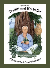Wolf Journey Book II - Trail of the Traditional Herbalist - Artwork by Joanna Colbert