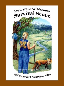Wolf Journey Book IV - Trail of the Survival Scout - Artwork by Joanna Colbert