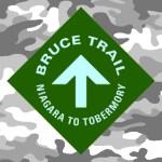 Yule Bruce Trail Hike, 2006