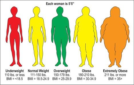 BMI chart - Women Health Info Blog