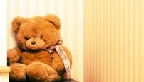 introvert-teddy