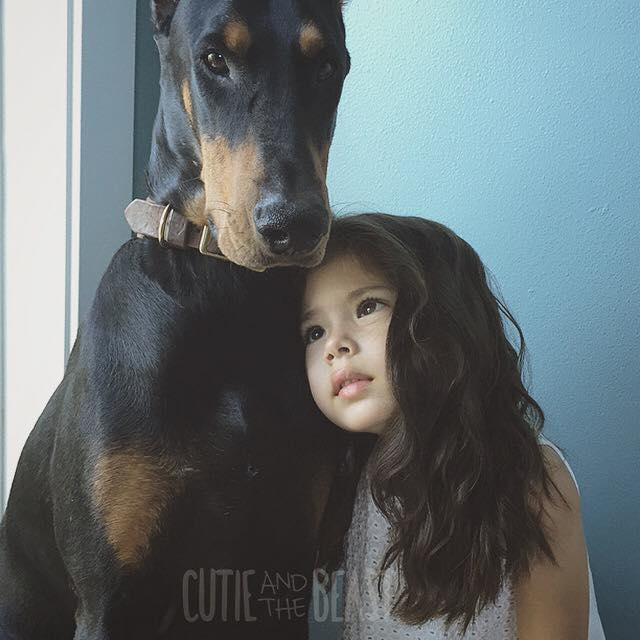 Really Cute Dog Wallpaper 24 Adorable Photos Of Cutie Siena And Her Doberman