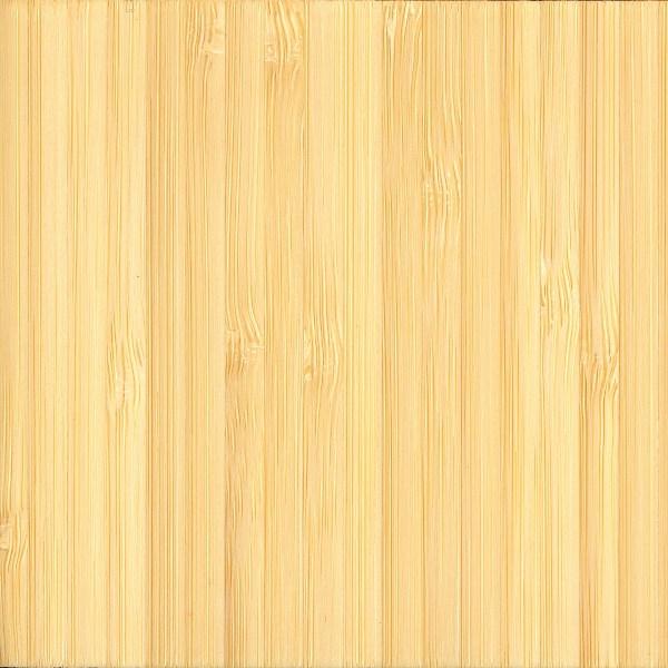 Bamboo The Wood Database - Lumber Identification (Monocot)