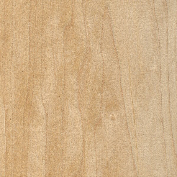 identify maple wood