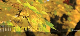 Digital Calendar: September 2014