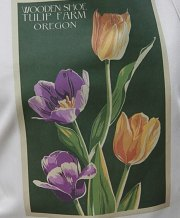 apron tulips graphic
