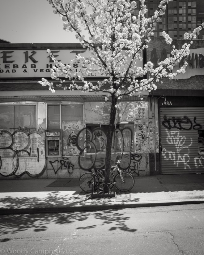 Spring on the lower east side