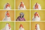 Classical Chicken, Danubio Azul por los Muppets