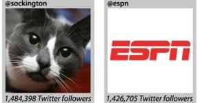 Las-mascotas-en-las-redes-sociales-3_thumb.jpg