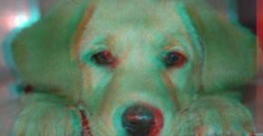 mascota-3d.jpg