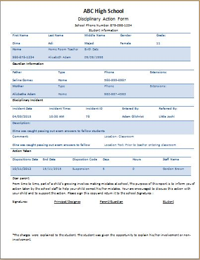 disciplinary action form word - Maggilocustdesign - forms templates word