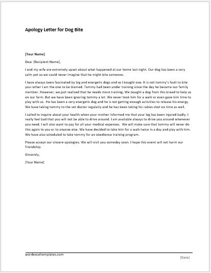 Sample Apology Letter To Friend - professional apology letter