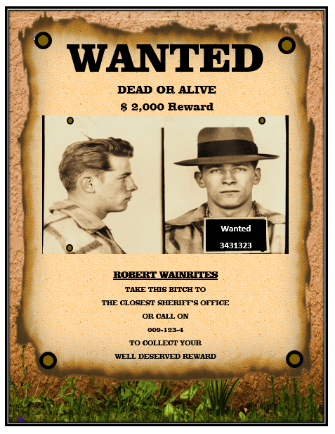 13 Free Wanted Poster Templates (Printable Docs) – Microsoft Word