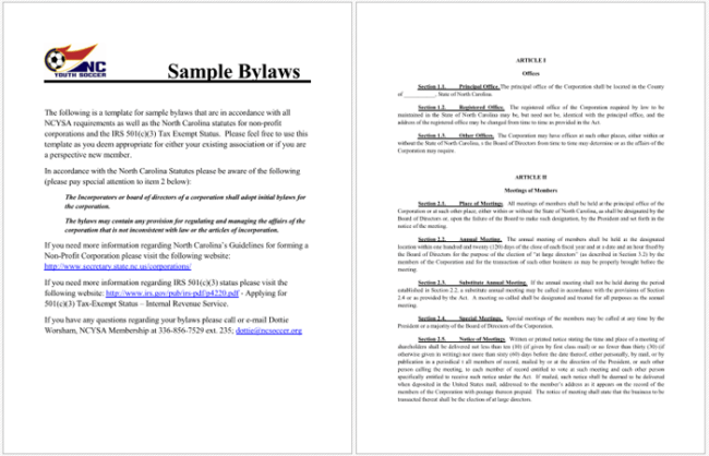 Bylaws Template Costumepartyrun - Company bylaws template
