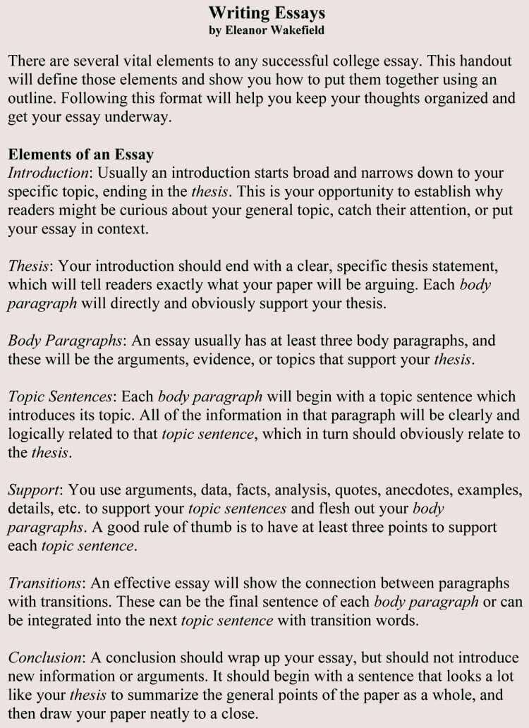 write a essay online