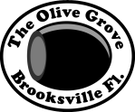 The Olive Grove in Brooksville - Grayscale