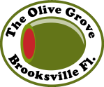 The Olive Grove in Brooksville - Color