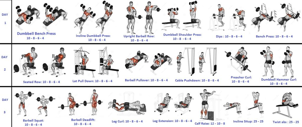 Weight Lifting Workouts The 3 Day Fast Track Mass Gainer Fitness