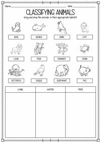 15 Best Images of Classifying Animals Worksheets Preschool ...