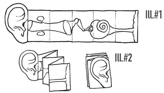 simple ear diagram simple ear diagram