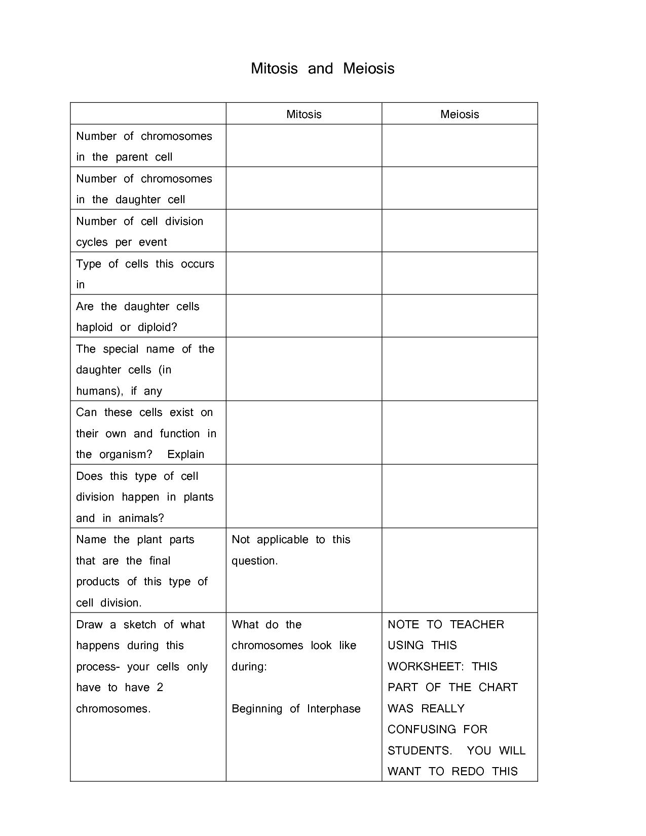 worksheet comparing mitosis and meiosis worksheet key