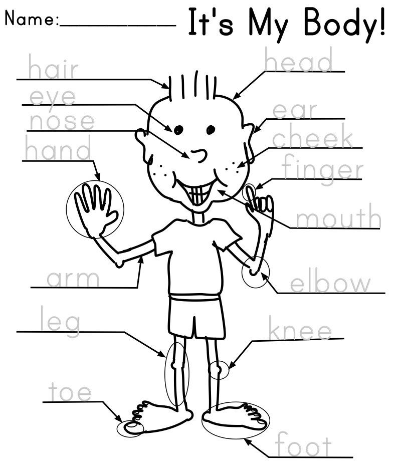 15 Best Images of ESL Worksheets Preschool - Kindergarten English