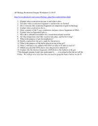 14 Best Images of Enzymes Worksheet Answer Key - Enzymes ...