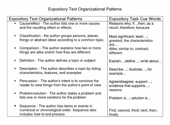 Sample essays for 4th grade writing services company reviews