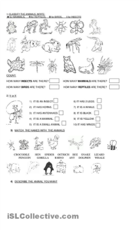 15 Best Images of Animal Classification Worksheets - First ...